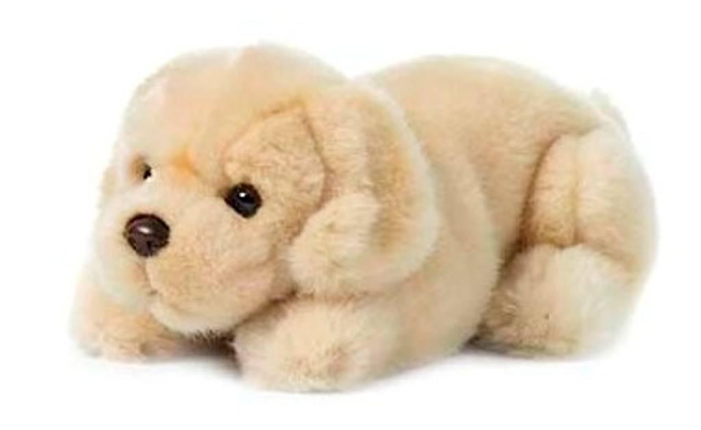 peluche bebe chien