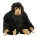 chimpanze-bebe-25cmh_7039.jpg