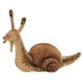 escargot-22cml_26608.jpg