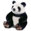 panda-assis-23cmh_7027.jpg