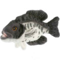 peluche-poisson-carpe--20-cm-anima-24024.jpg