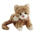 Bukowski Peluchette Chat Little Maciek - 15 cm