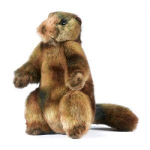 Peluche Marmotte - 20 cm