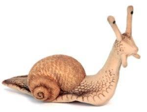 Peluche Escargot - 22 cm