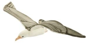 Peluche Goéland en Vol - 85 cm