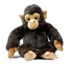Peluche Chimpanzé Ushuaïa - 28 cm