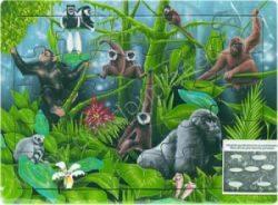 Puzzle des Primates