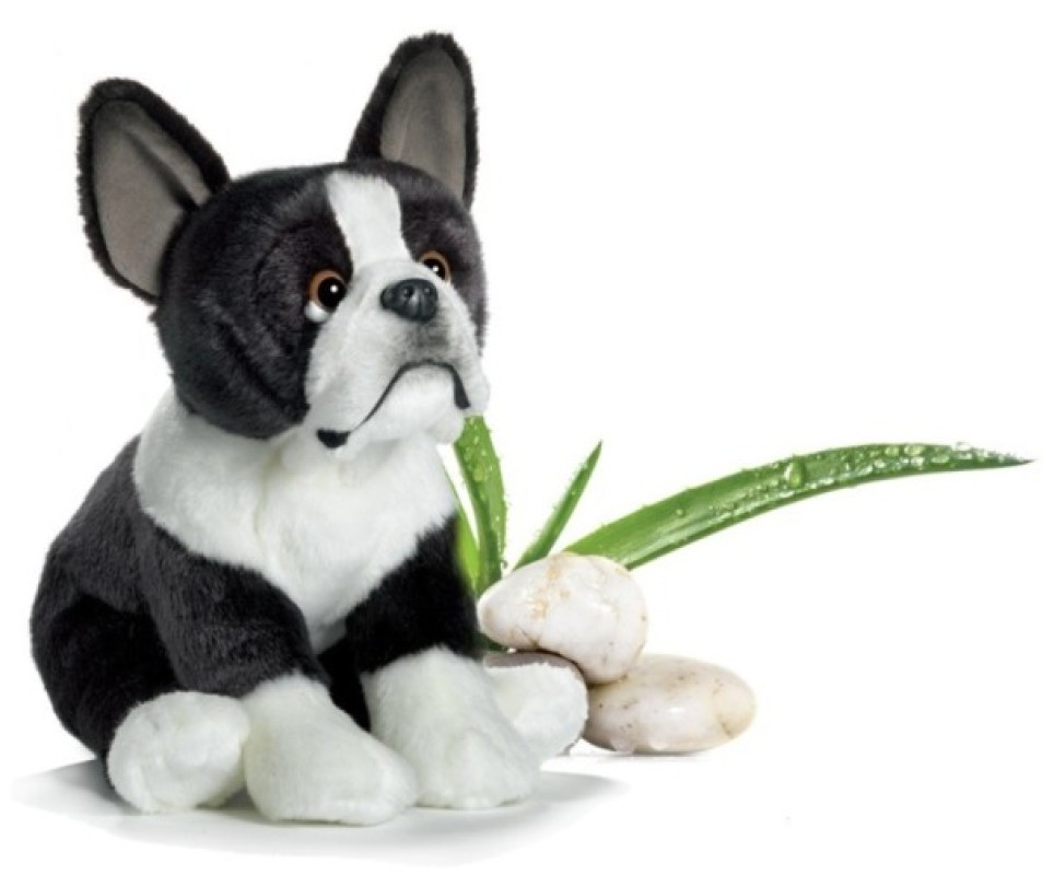 Anima Peluche Chien Bulldog Français - 22 cm