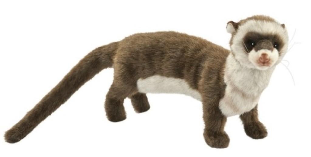 Anima Peluche Furet - 35 cm