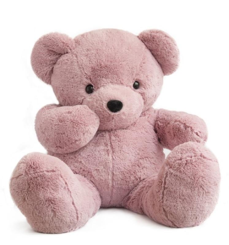 Histoire d ours peluche ours coloriage rose des bois 110 cm - Dessin ours en peluche ...