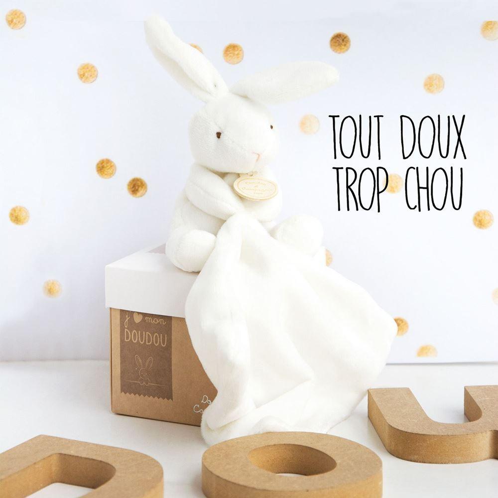 Doudou Lapin Avec Mouchoir